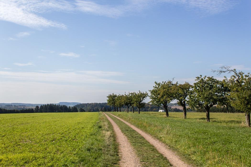 Wanderung-Ehrbachklamm-Hunsrueck-2
