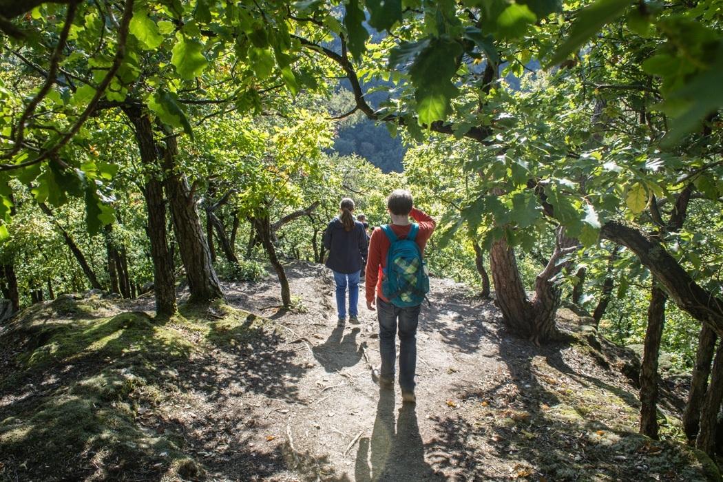 Wanderung-Ehrbachklamm-Hunsrueck-23