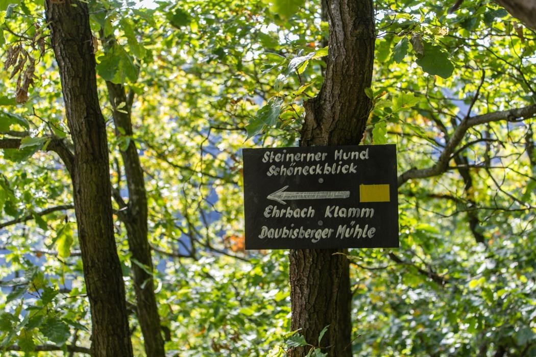 Wanderung-Ehrbachklamm-Hunsrueck-28