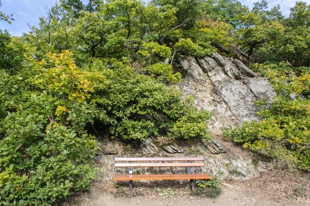 Wanderung-Ehrbachklamm-Hunsrueck-32