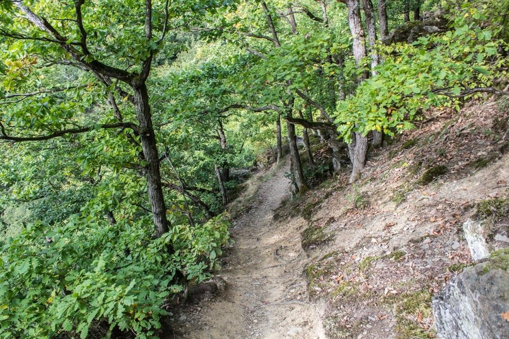 Wanderung-Ehrbachklamm-Hunsrueck-34
