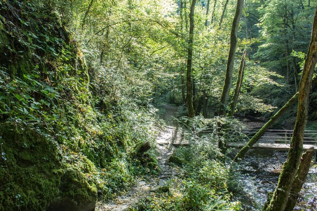 Wanderung-Ehrbachklamm-Hunsrueck-9