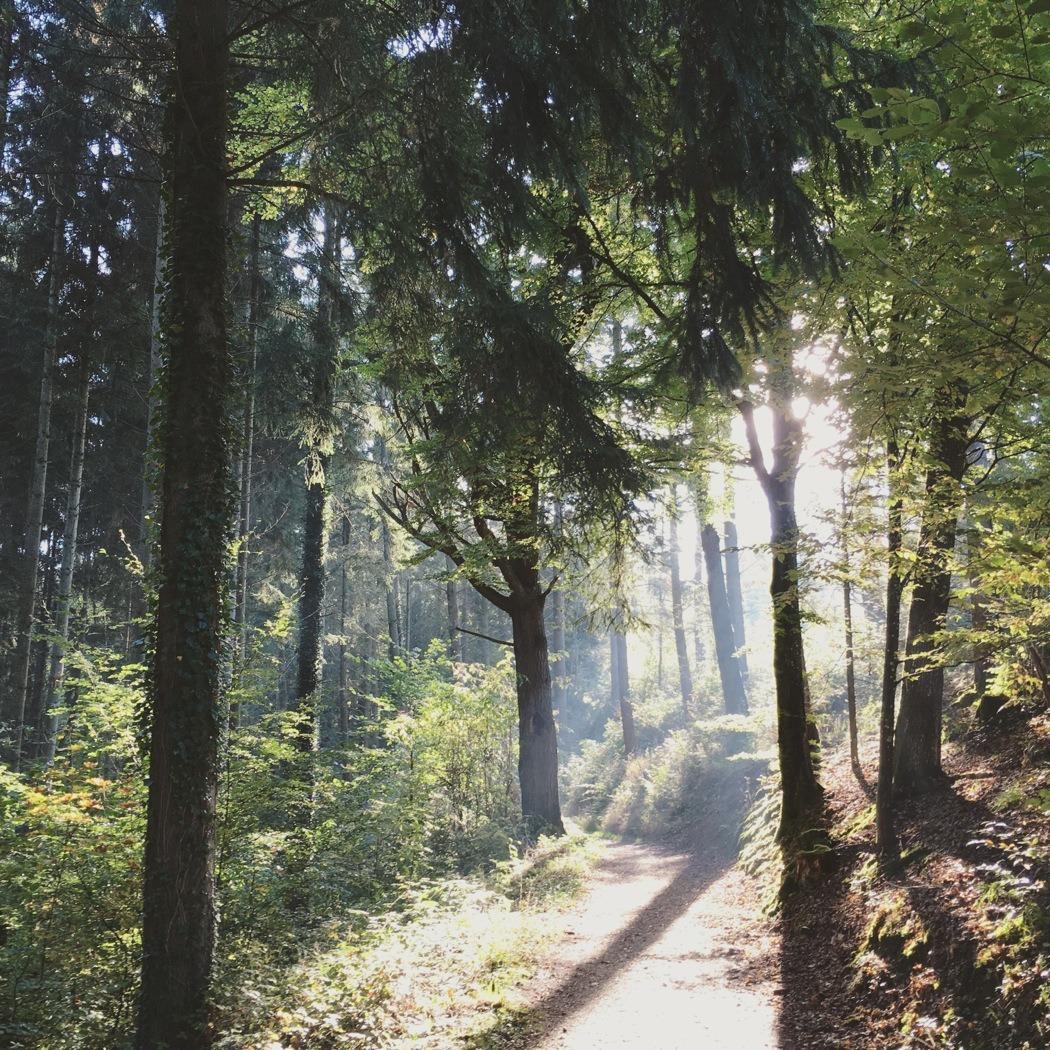 Herbst-Instagram05