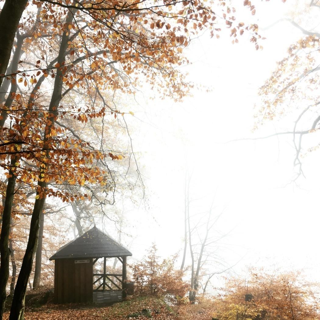 Herbst-Instagram16
