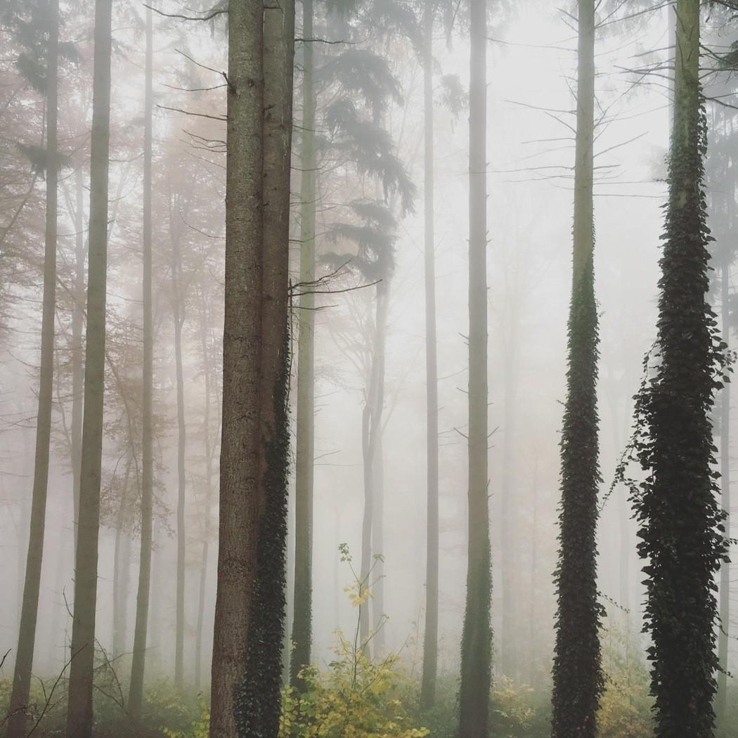 Herbst-Instagram20