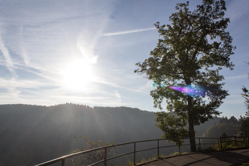 Lieserpfad-Trekking-13