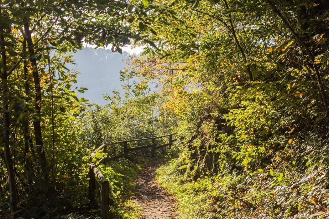 Lieserpfad-Trekking-15