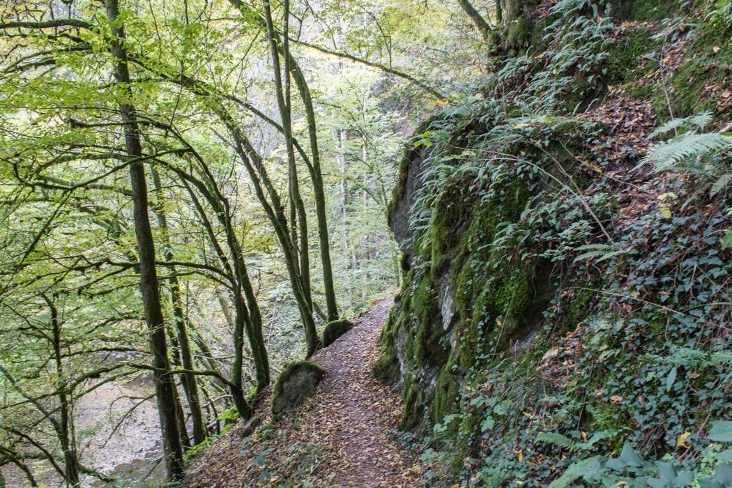 Lieserpfad-Trekking-29