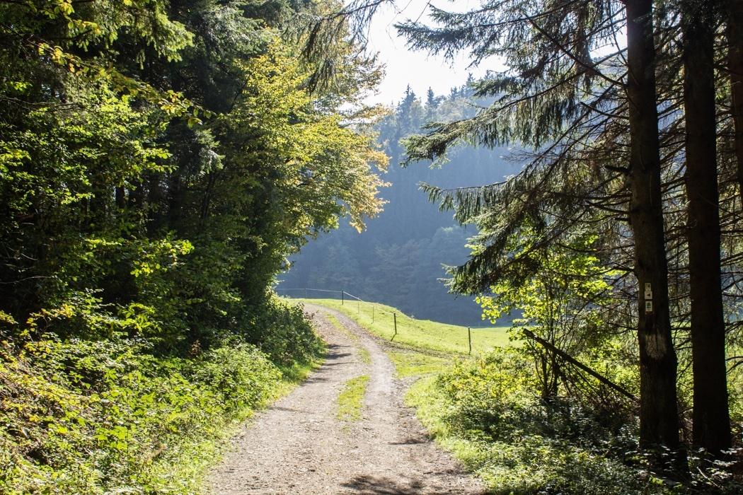 Lieserpfad-Trekking-6
