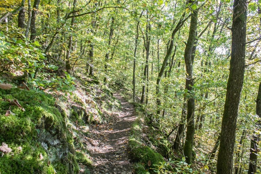Lieserpfad-Trekking-8