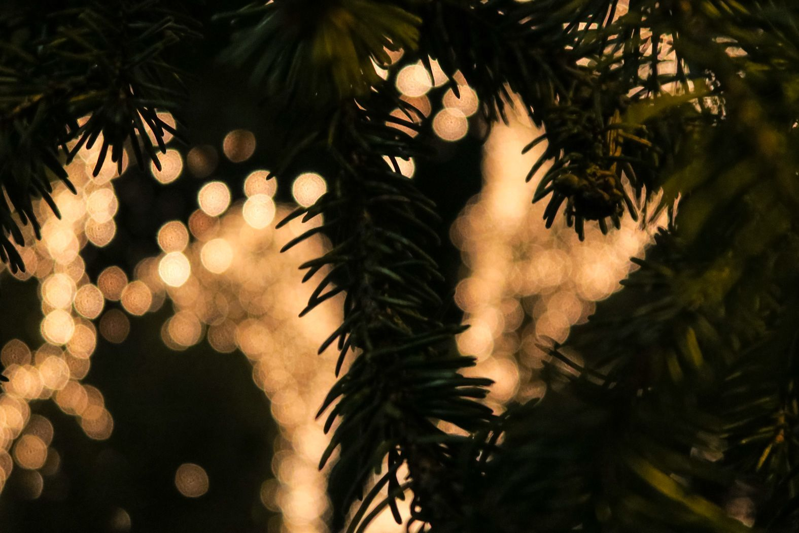 Weihnachtsmakt-Goslar-2