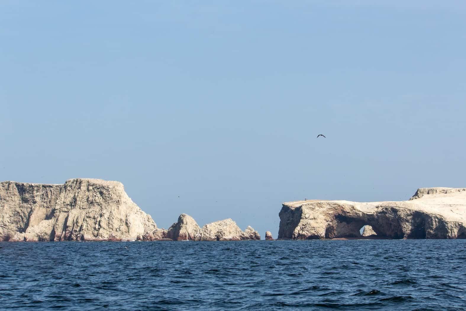 Islas Ballestas-Paracas-8