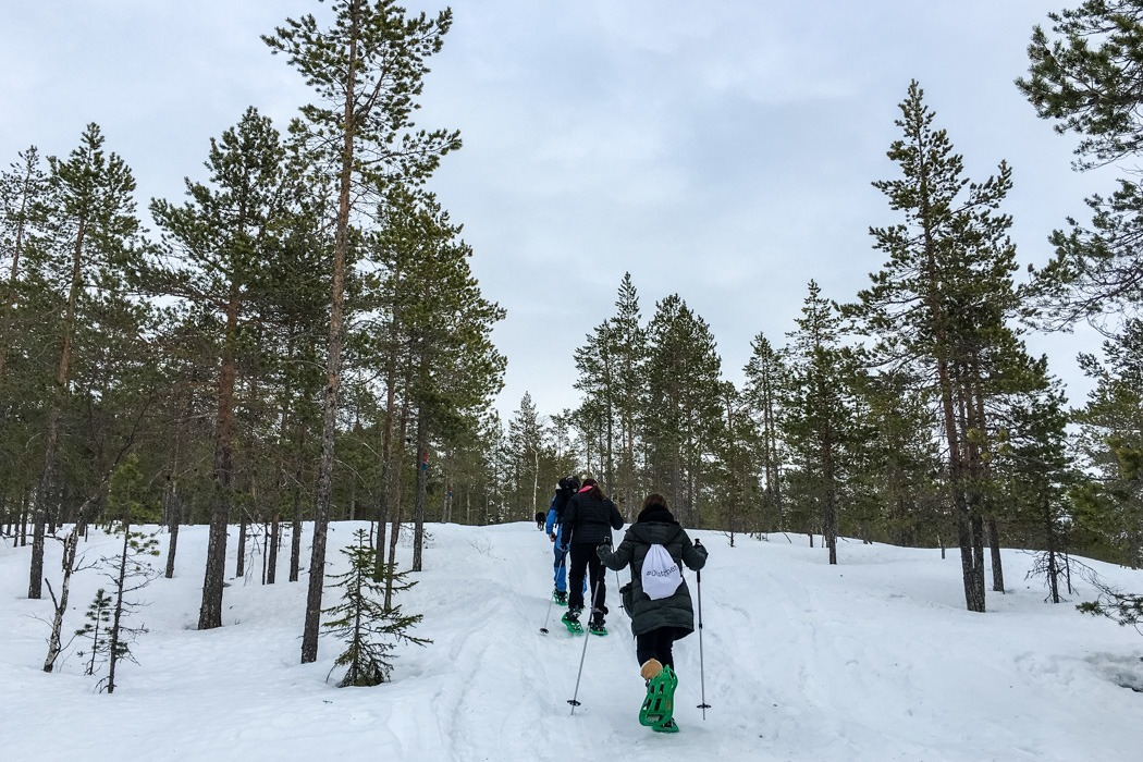 Schwedisch Lappland - 7 Abenteuer, die du erleben musst! z.B. Schneeschuhwandern