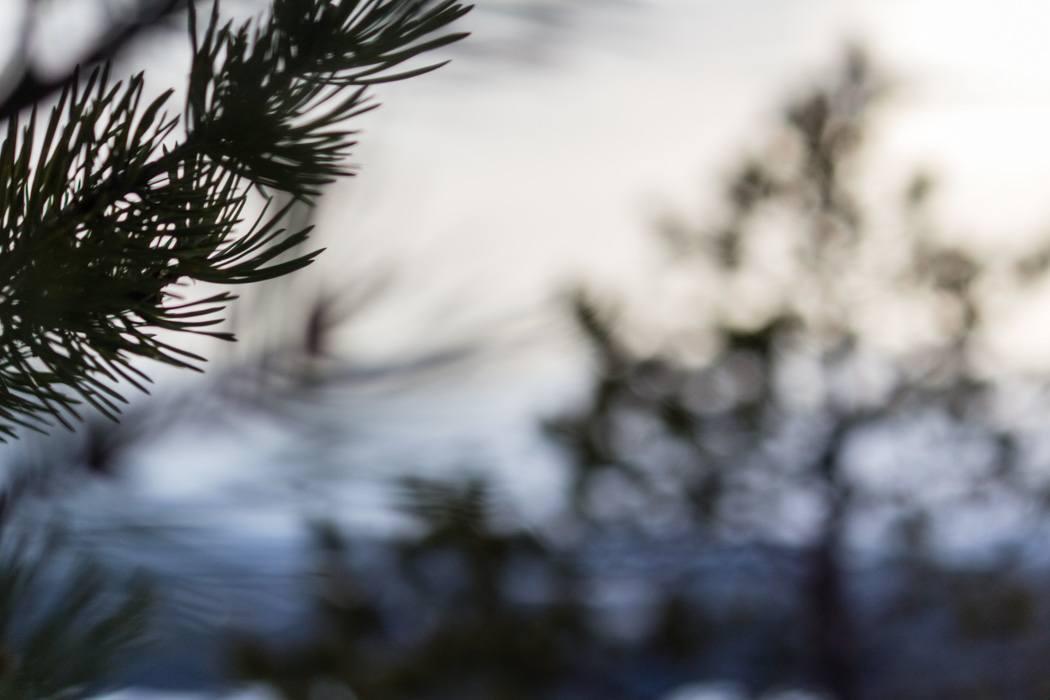 Schwedisch Lappland - 7 Abenteuer, die du erleben musst! z.B. Schneeschuhwandern / Details