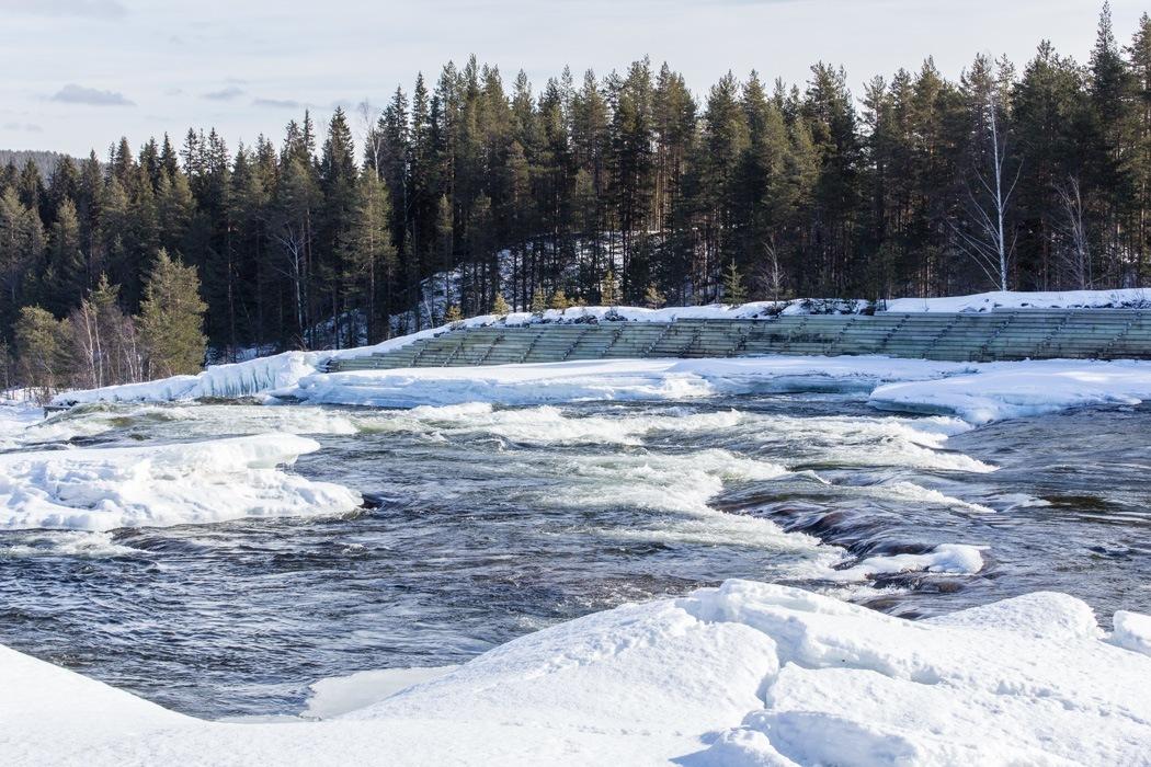 Schwedisch Lappland - 7 Abenteuer, die du erleben musst! z.B. Storforsen Nationalpark