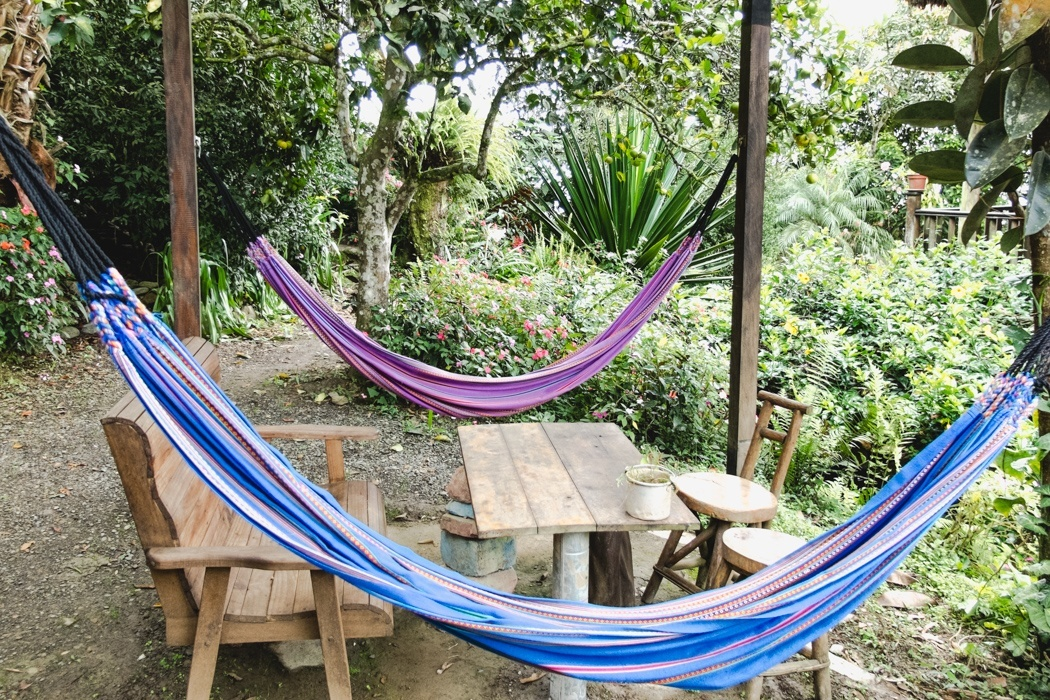 7-Orte-in-Bolivien-unbedingt-besuchen-Coroico-2