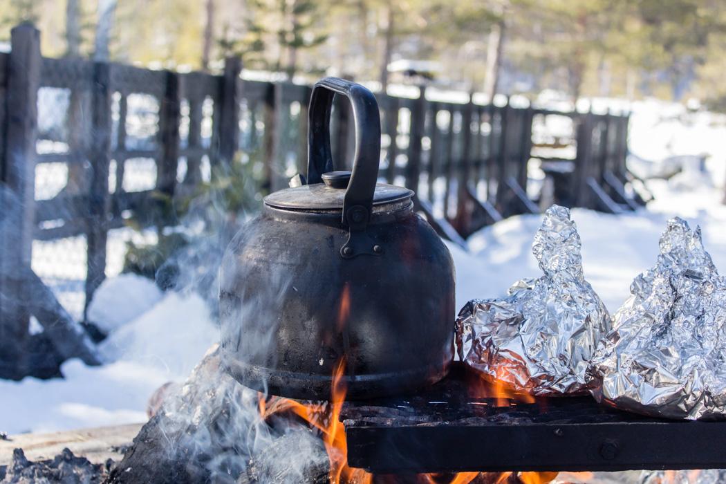 Schwedisch Lappland - 7 Abenteuer, die du erleben musst! z.B. Fika am Feuer im Storforsen Nationalpark