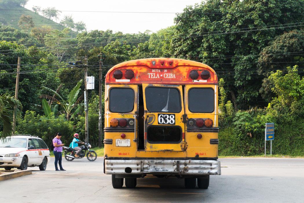 Honduras - 12 Gründe, warum das Land auf deine Bucket List gehört! - Bus