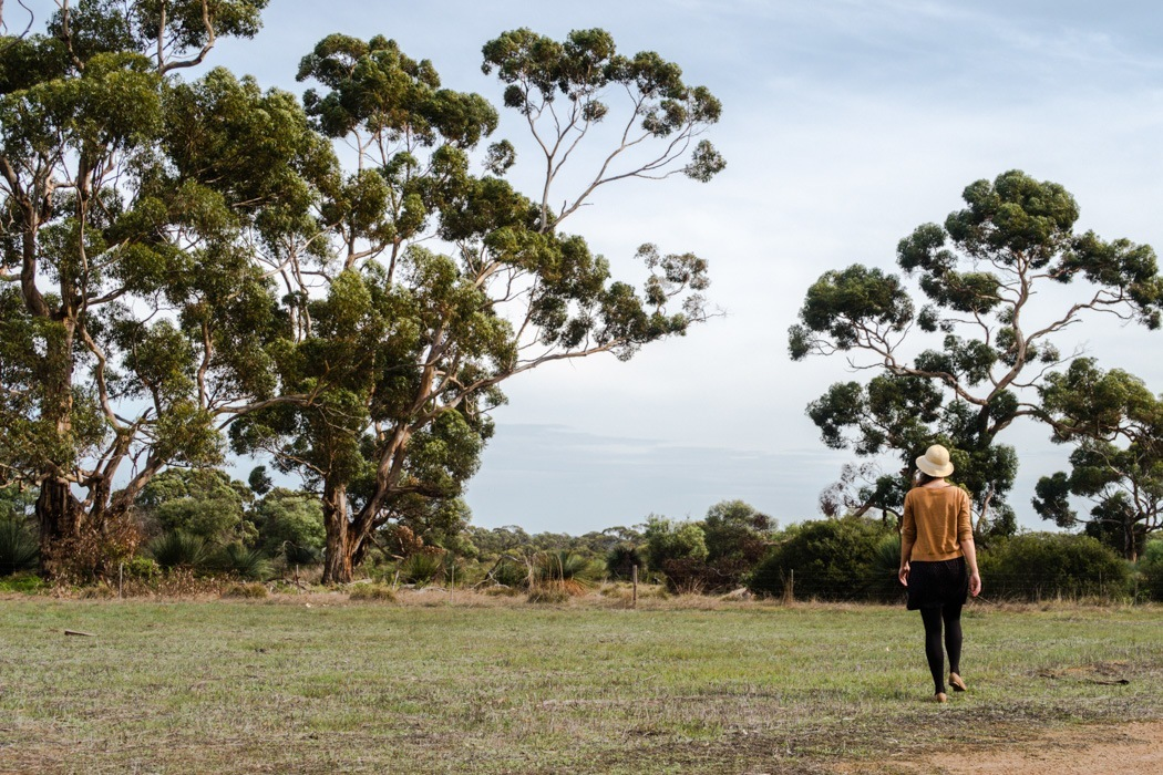 Kangaroo-Island-Highlights-19