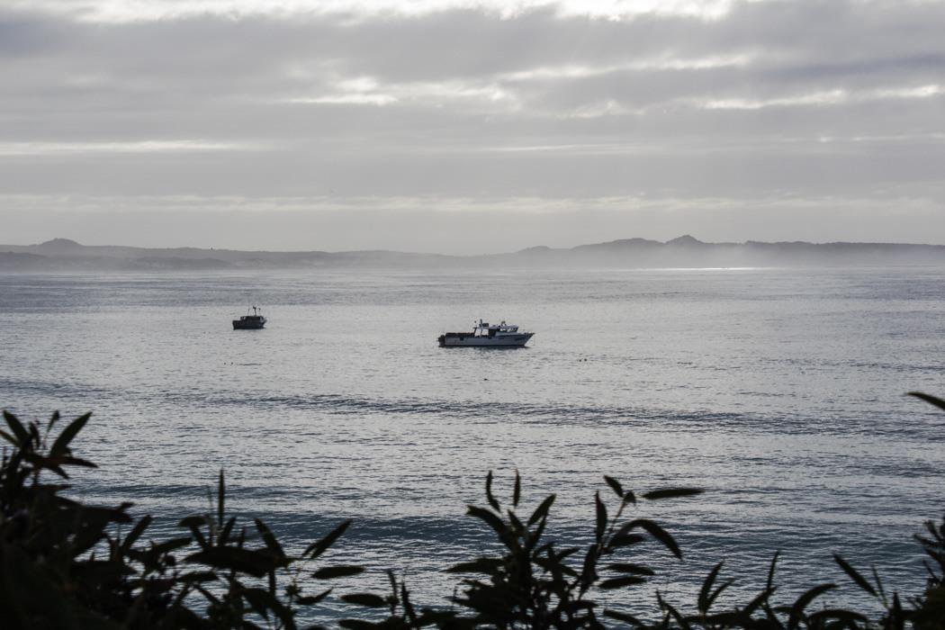 Kangaroo-Island-Highlights-2