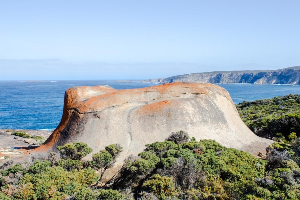 Kangaroo-Island-Highlights-6