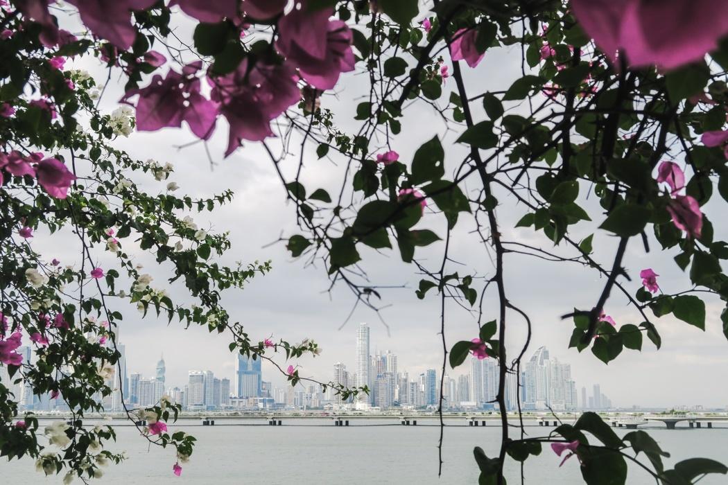 Panama-Viejo-3