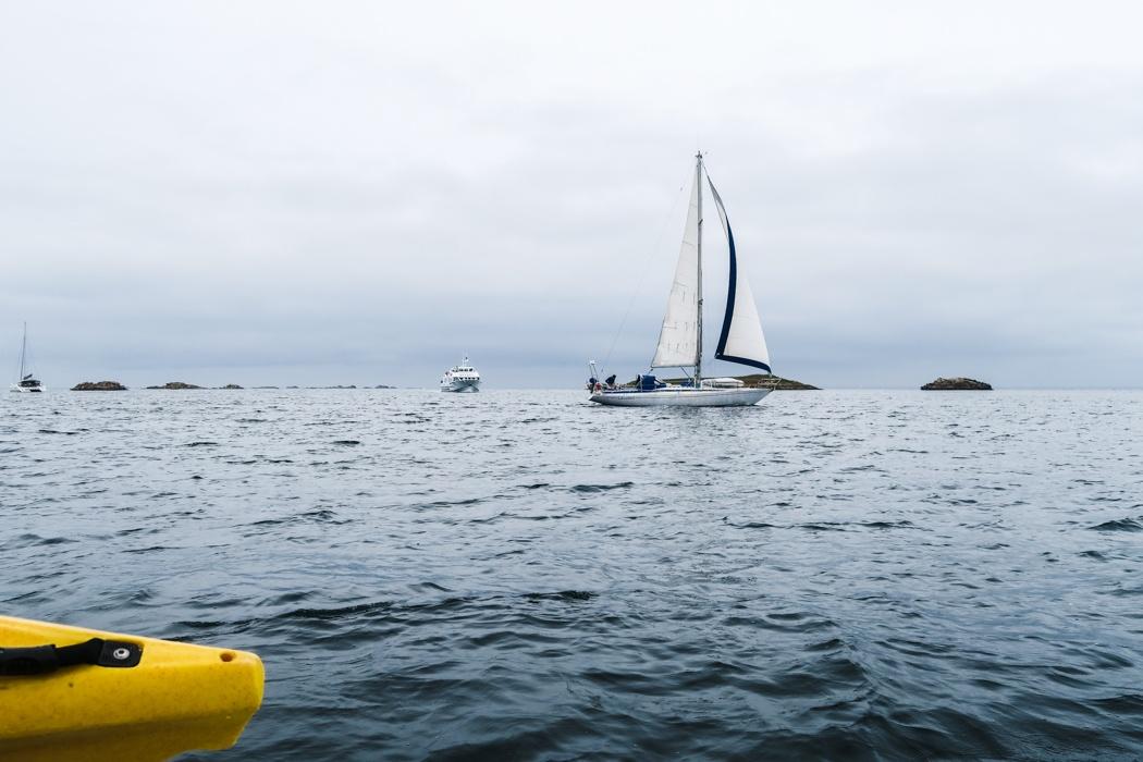 """Glénan Archipel - Kurs auf die """"Südseeinseln"""" der Bretagne: Auch Seegler sind unterwegs"""