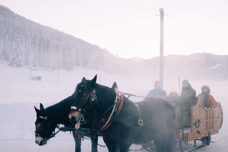 Skifahren und mehr – Ein Winter-Roadtrip durchs Salzkammergut: Pferdekutschenfahrt durch Gosau