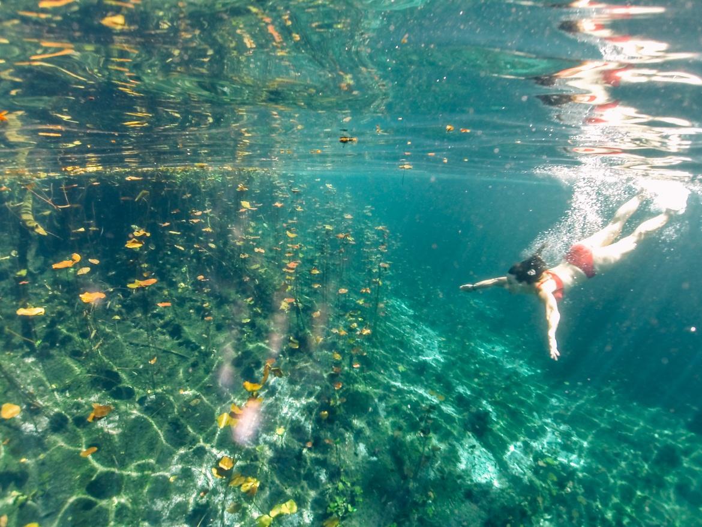 Die schönsten Cenoten in Yucatan - Mexikos versteckte Oasen: Cenote Carwash