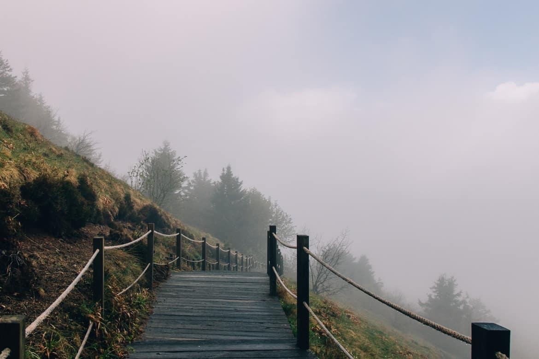 Auvergne - Wandern am Puy de Dôme: auf Holzwegen hinab