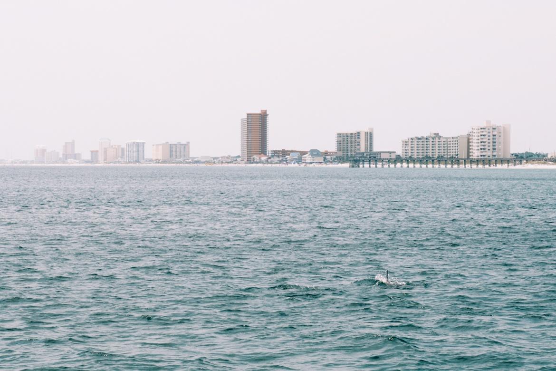 Panama City Beach: Bootsfahrt Shell Island