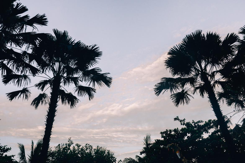 Anantara Seminyak, Bali - Palmen am Strand