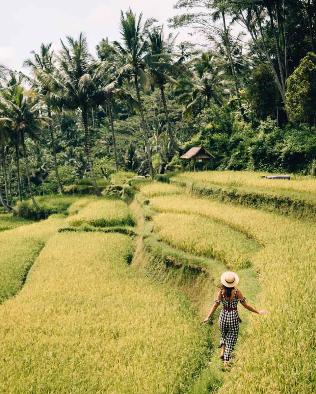 Die schönsten Tempel auf Bali - Die Grabstätte Gunung Kawi 2