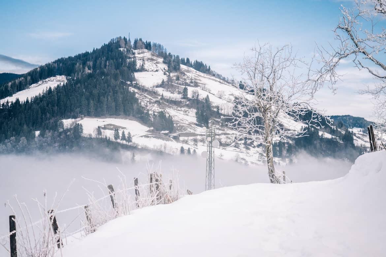 Skitour für Anfänger vom Alpendorf zur Kreistenalm - Winter Yeah in Sankt Johann im Pongau 12