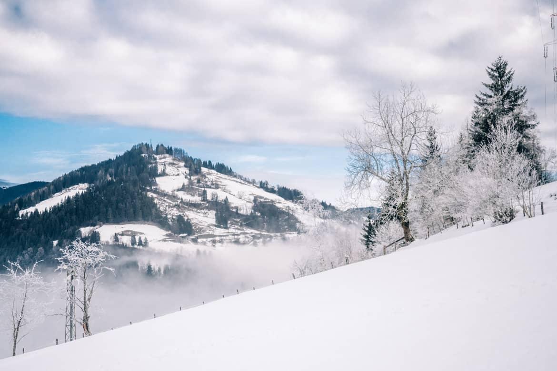 Skitour für Anfänger vom Alpendorf zur Kreistenalm - Winter Yeah in Sankt Johann im Pongau 18