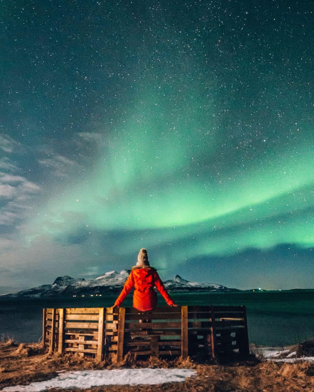 März Update - Die Nordländerin in mir und wie ich mich in die Lofoten verliebte: Nordlichter in Bodo
