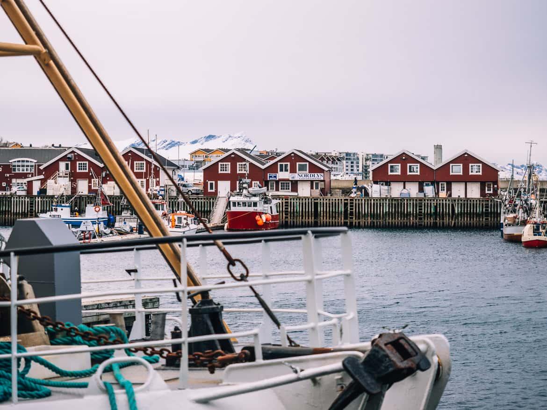 Bodø - Nordlichter, Streetart & unbändige Natur in Nordnorwegen - Bodo Hafen