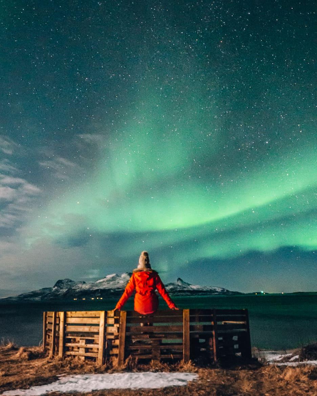 Bodø - Nordlichter, Streetart & unbändige Natur in Nordnorwegen - Nordlichter 1