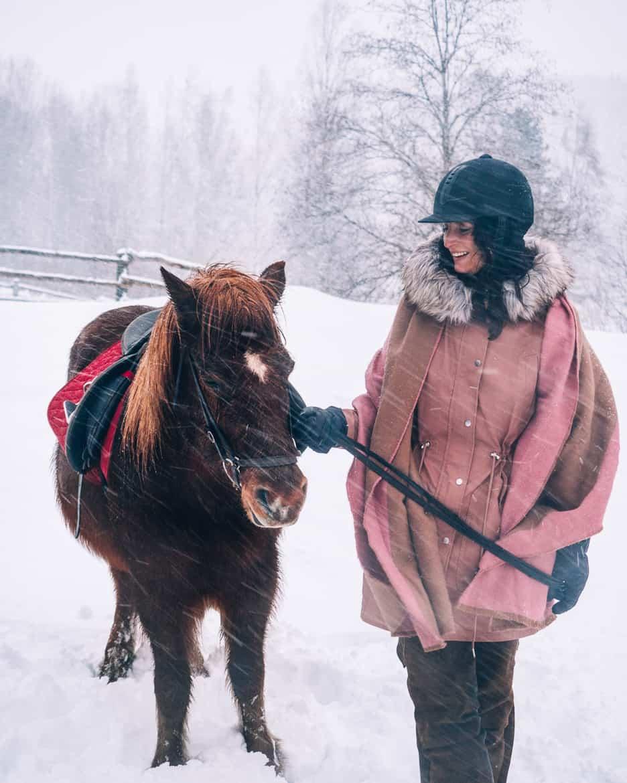 Koli - Skifahren & mehr in Finnlands schönstem Nationalpark: Islandpferde reiten in Finnland 2