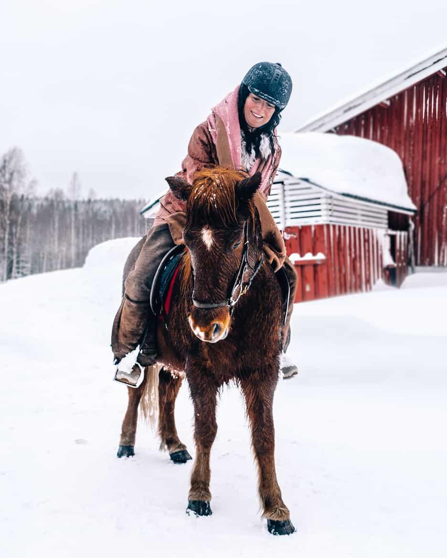 Koli - Skifahren & mehr in Finnlands schönstem Nationalpark: Islandpferde reiten in Finnland 3