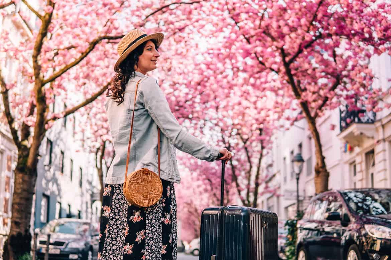 Kirschblüte in Bonn in der Heerstraße -ein tolles Reiseziel in Deutschland