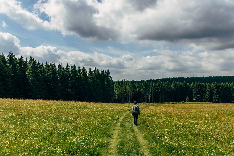 Harzüberquerung in zwei Tagen auf dem Kaiserweg von Bad Harzburg nach Walkenried 15