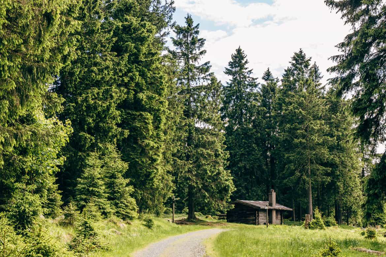 Harzüberquerung in zwei Tagen auf dem Kaiserweg von Bad Harzburg nach Walkenried 5