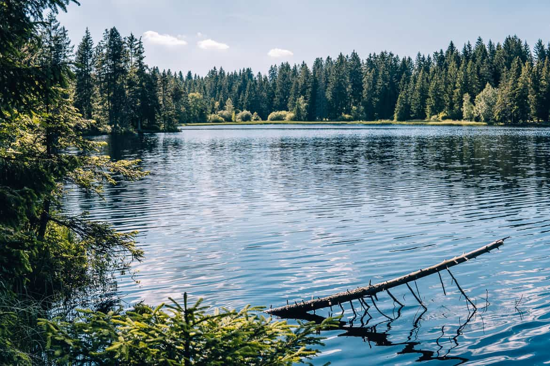 Jura & Drei-Seen-Land - 6 besondere Orte zum Natur genießen - Etangs de la Gruère