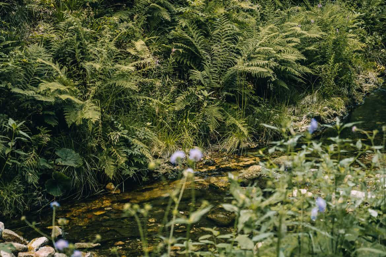 Sommer im Renchtal - ein Hauch Toskana im Schwarzwald: Allerheiligen Wasserfälle 2