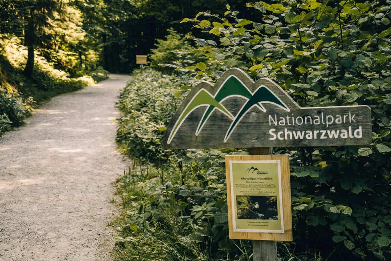 Sommer im Renchtal - ein Hauch Toskana im Schwarzwald: Allerheiligen