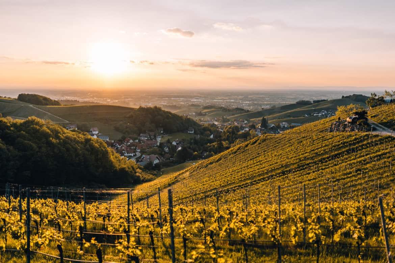 Renchtal & Sasbachwalden – Urlaub zwischen Weinreben & Schwarzwaldhöhen