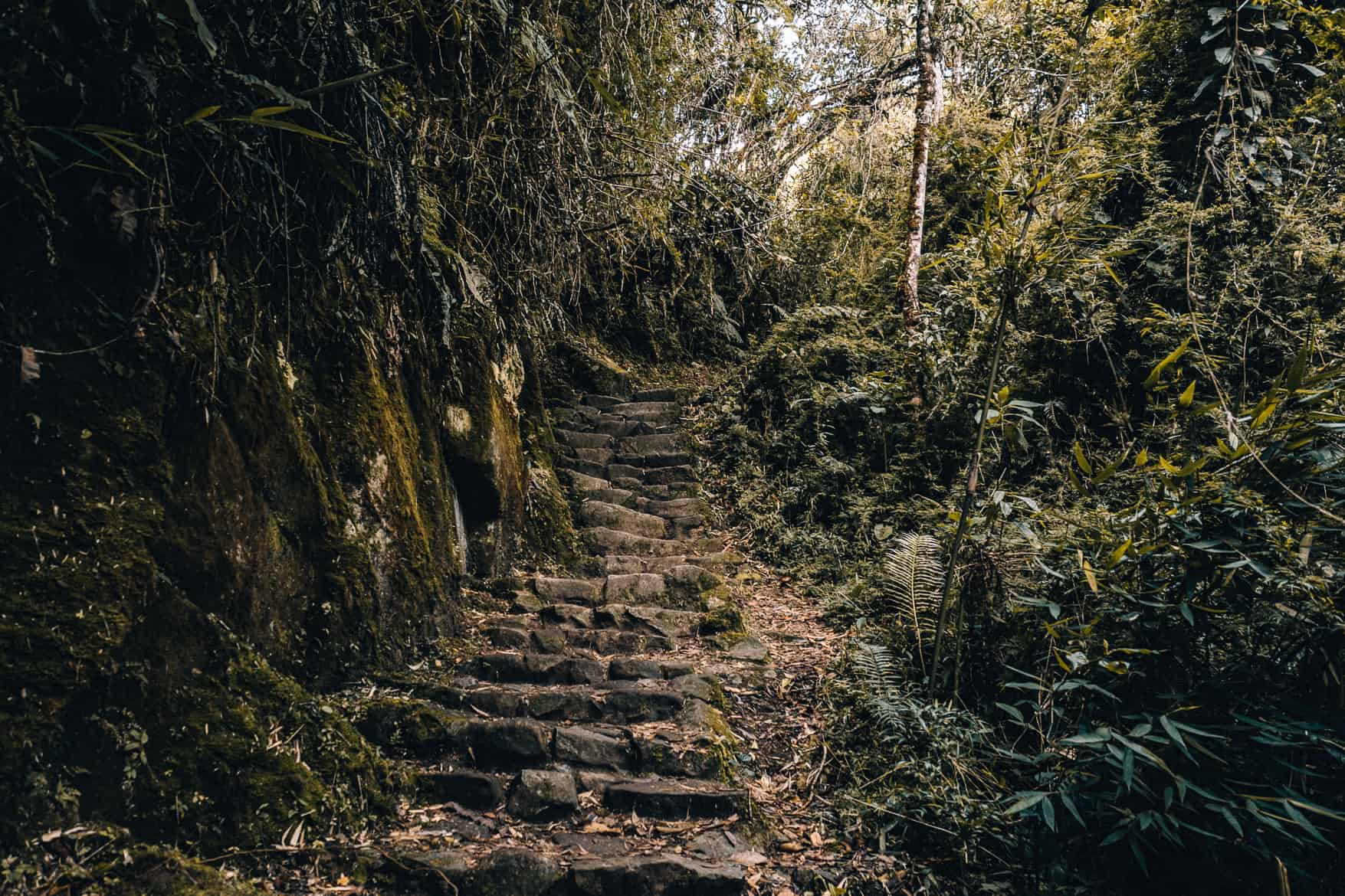 Machu Picchu Guide - Inka Trail