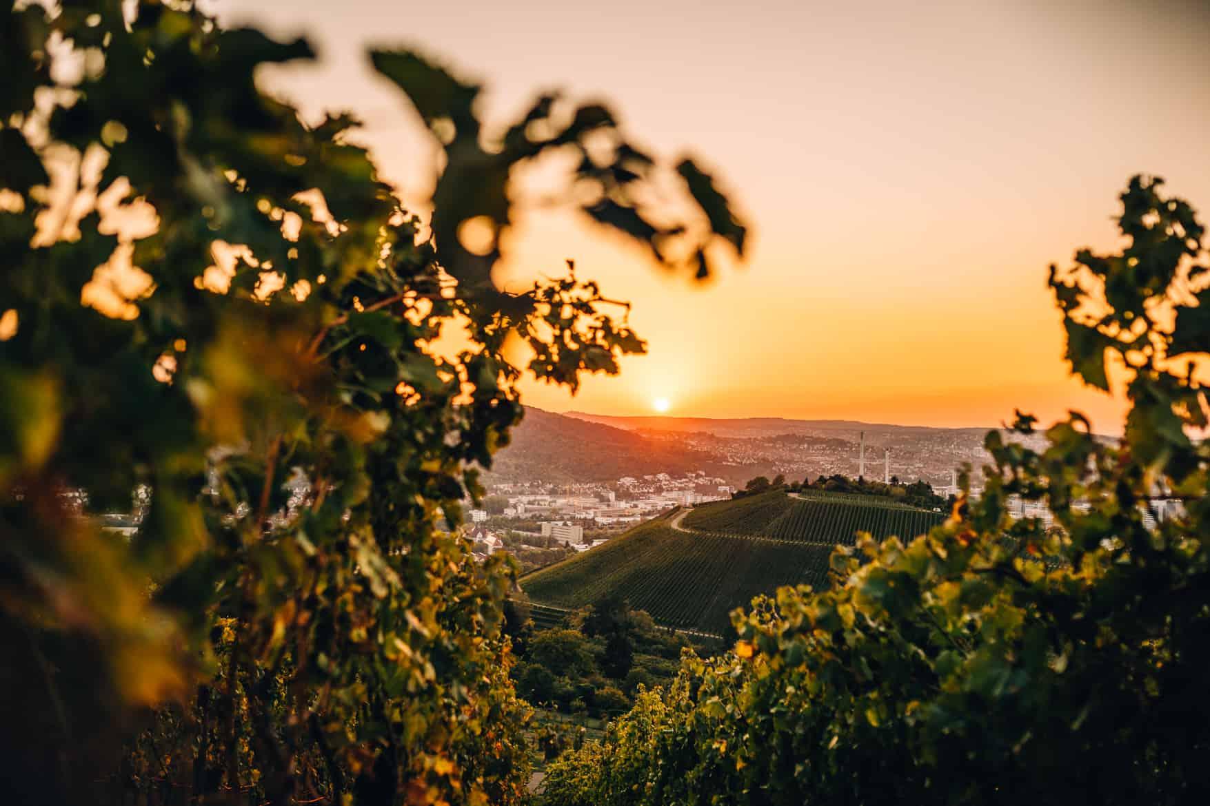 Stuttgart im Herbst - Cannstatter Wasen, Kürbisfestival & #tastyStuttgart: Sonnenuntergang Württemberg / Grabkapelle