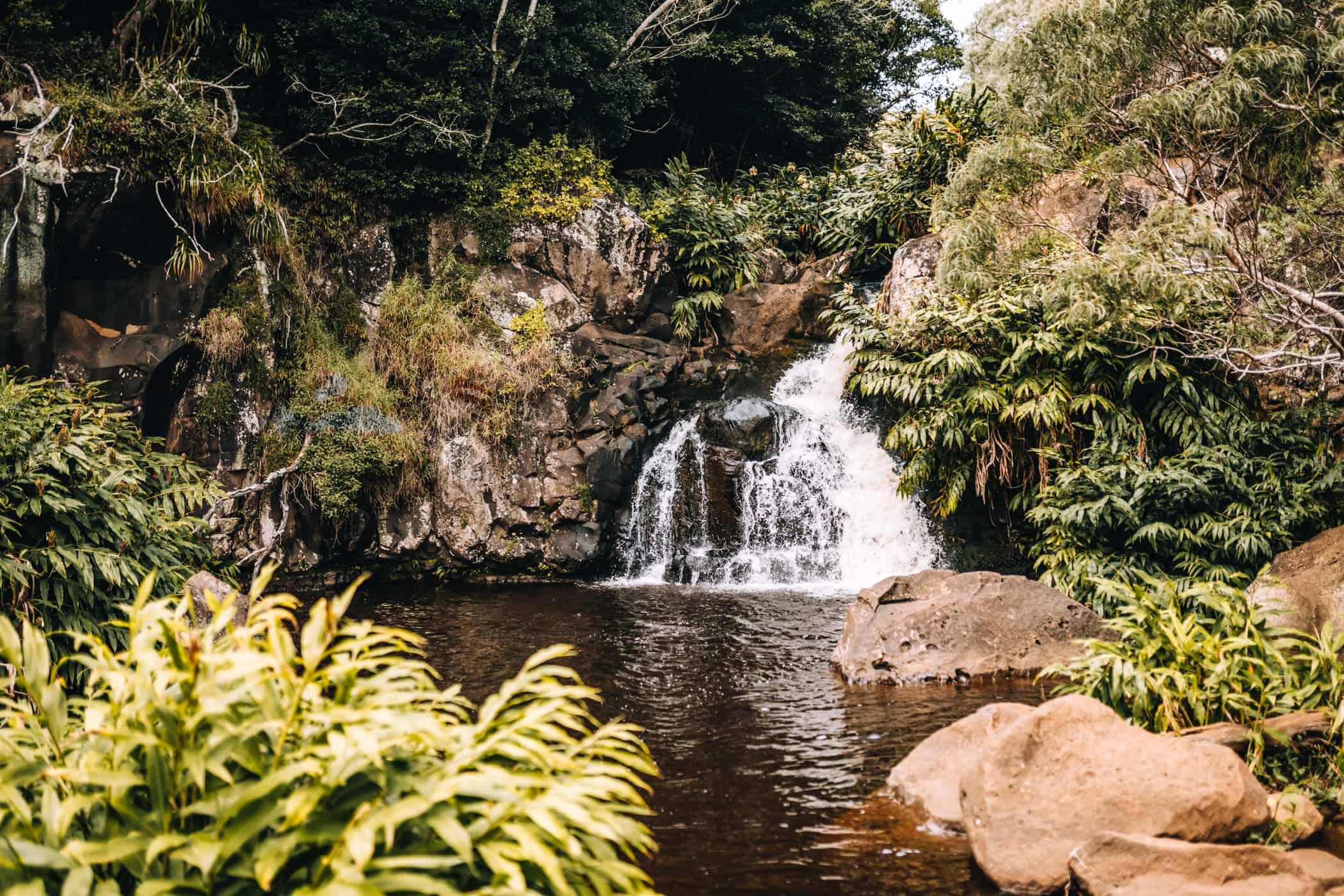 Kauai - Strände, Wandern & Ausflugsziele: Waimea Canyon Trail / Waipo Falls Trail